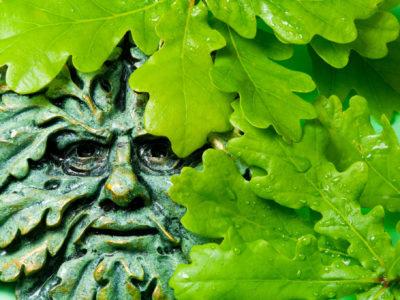 Přehled: Keltský šamanismus