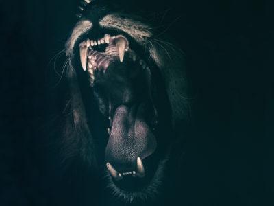 Přehled: Strach z pohledu šamanismu
