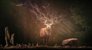 myticky jelen